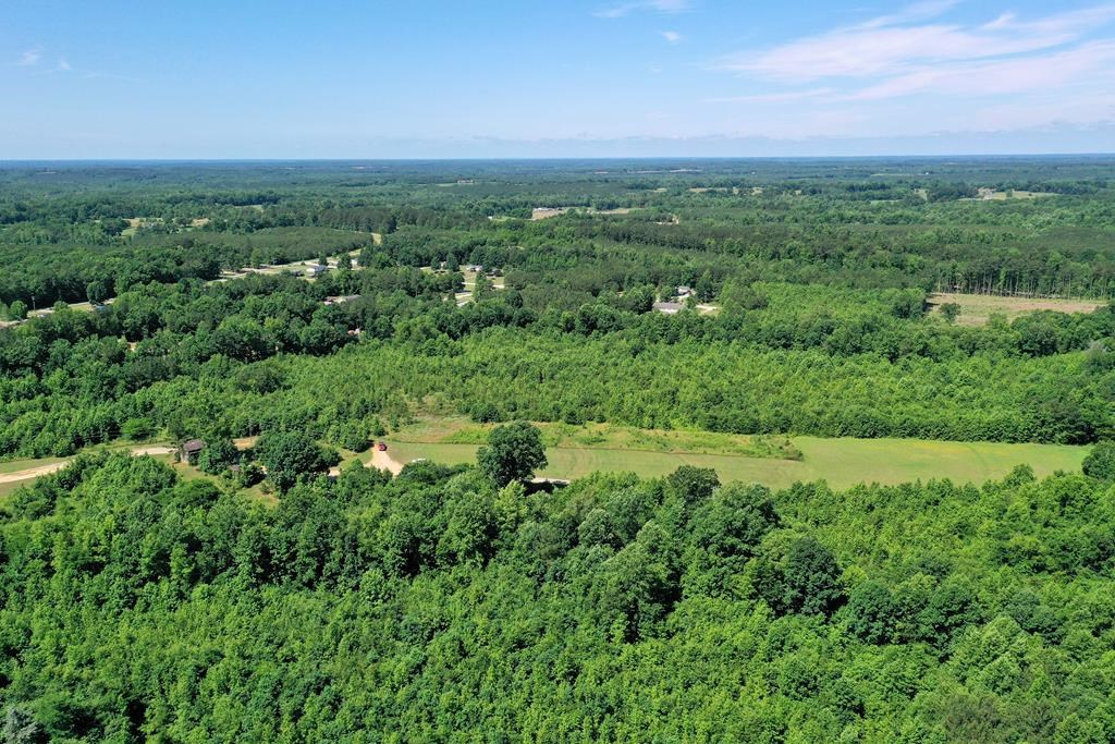 59 Acres Under $100,000 In Southern VA