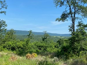 LAND BORDERING BUFFALO NATIONAL RIVER PROPERTY FOR SALE AR