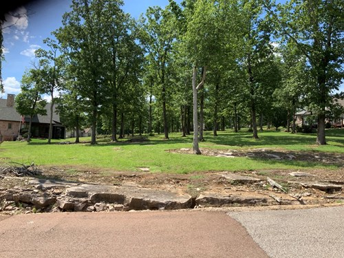 Residential Lot for Sale in Rivers Edge in Decatur Co. TN
