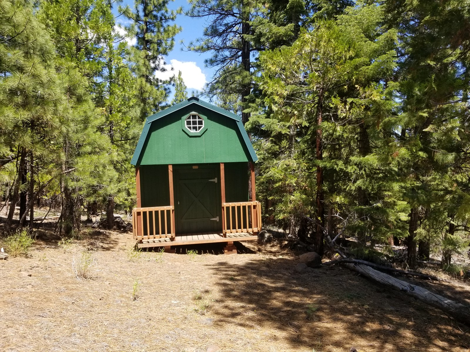 Cabin in the Woods, 1 +/- Acres