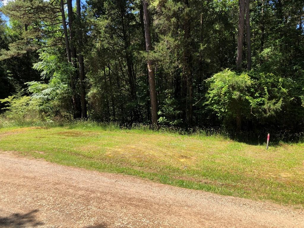 Recreational Escape Minutes To Kerr Lake, VA