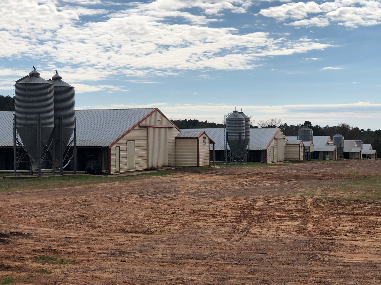 Well Maintained Poultry Farm in North East Texas