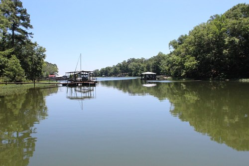 Lake Home For Sale Henry County, Alabama