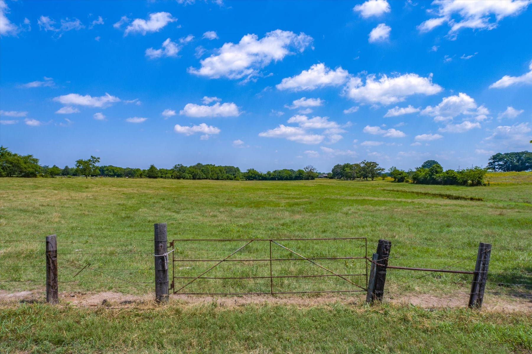 Land for Sale in Canton, Texas