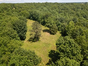 51.58 TN ACRES FOR SALE DEER TURKEY TIMBER HOMEPLACE STREAM