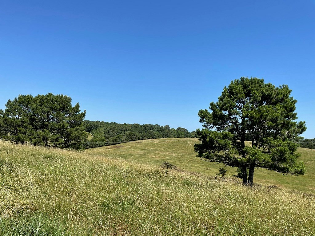 PASTURE GROUND WITH OZARK MOUNTAIN VIEW FOR SALE