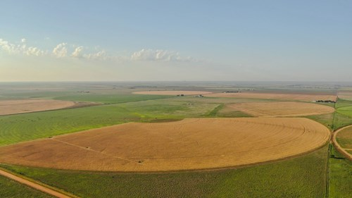 IRRIGATED FARM IN TEXAS W/ IMPROVED PASTURE AND CULTIVATION