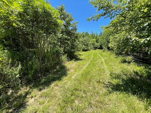 HUNTING LAND W/ POND FOR SALE IN HARDIN COUNTY