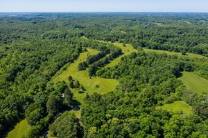 HUNTING & RECREATIONAL LAND FOR SALE IN GILES COUNTY, TN