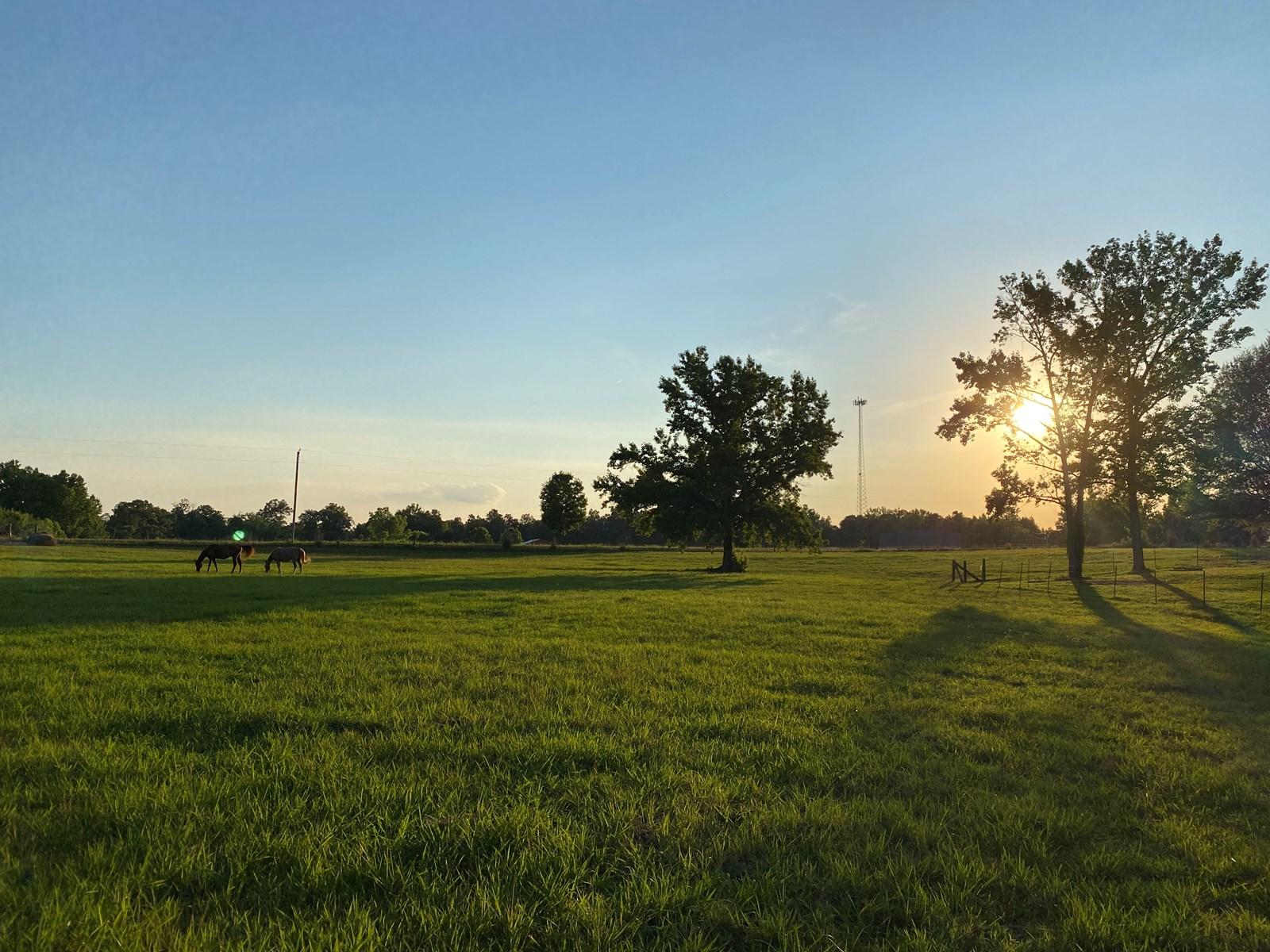 MINI FARM FOR SALE ADAMSVILLE, TN, BRICK HOME, BARN, 6.4 AC