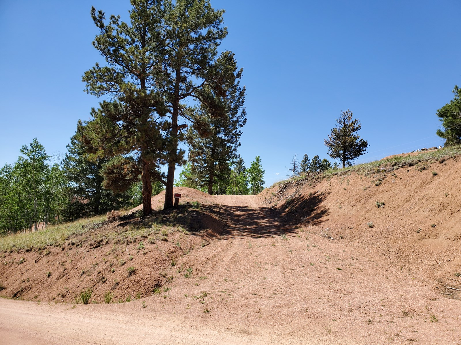 Buildable lot Trees Florissant CO National Forest Hiking Fis