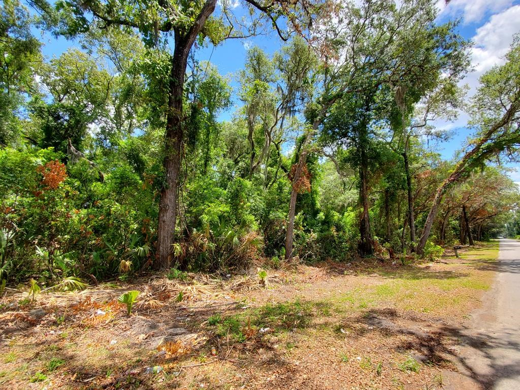 Commercial land off HWY 19, Fanning Springs, 8.82 acres