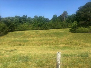 LAND WITH POND AND CREEK IN BALL GROUND, GA
