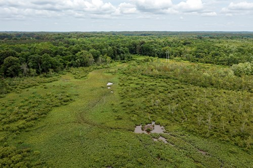 West Tennessee Hunting Property for Sale on Big Sandy River