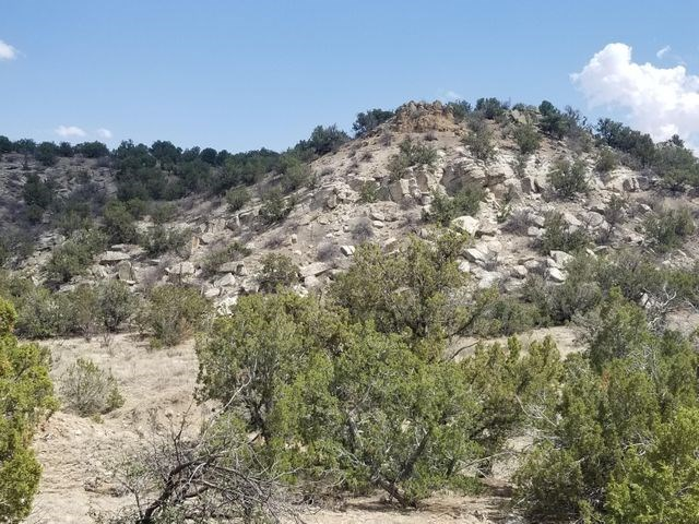 40± Remote Acres For Sale in Santa Fe County, New Mexico
