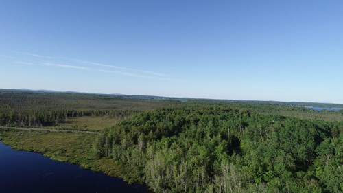 Maine Investment Land for Sale
