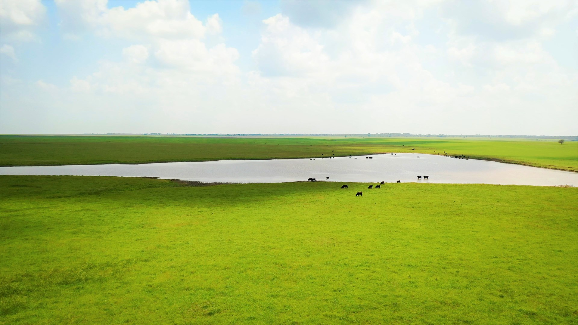 Large Cattle Stocker Operation Ranch For Sale In Vinita OK