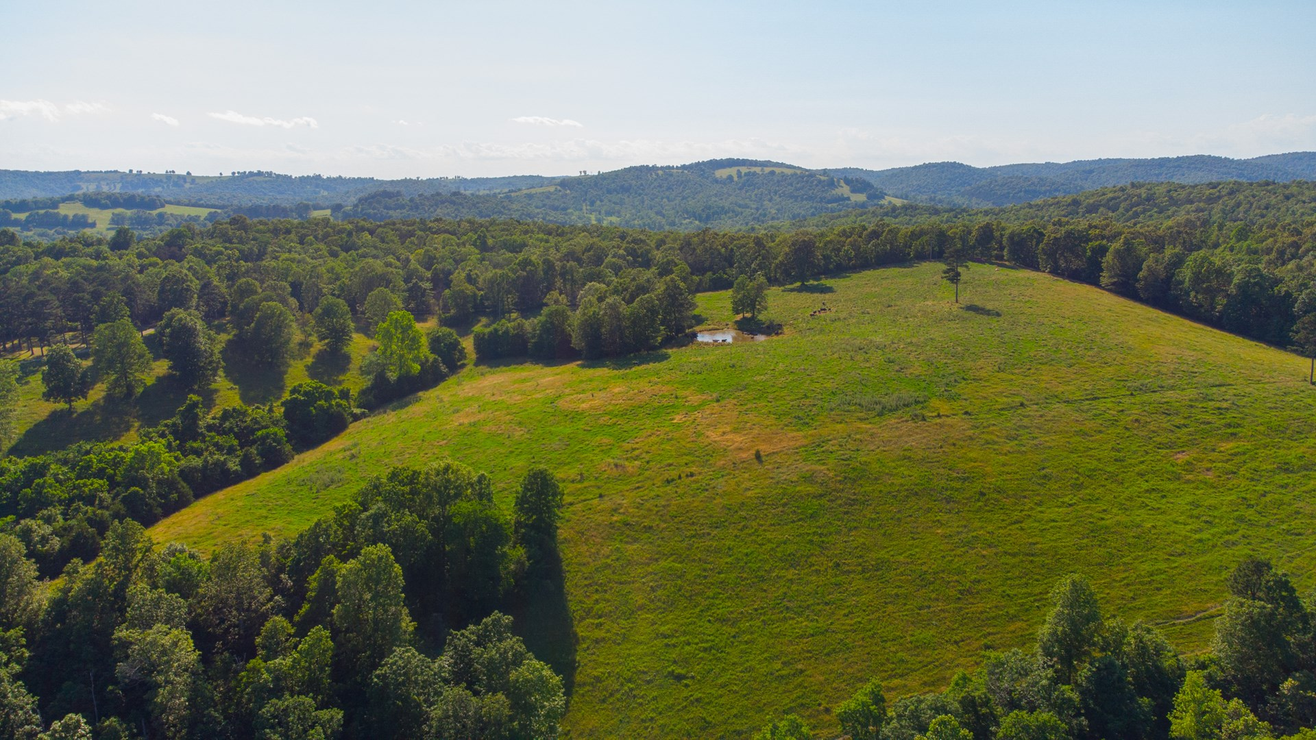 CATTLE FARM AND NATURE RETREAT