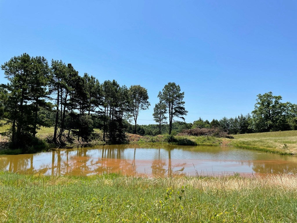 OZARK MOUNTAIN ACREAGE WITH PASTURE AND YEAR ROUND CREEK