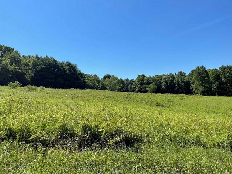 Hayfield/crop