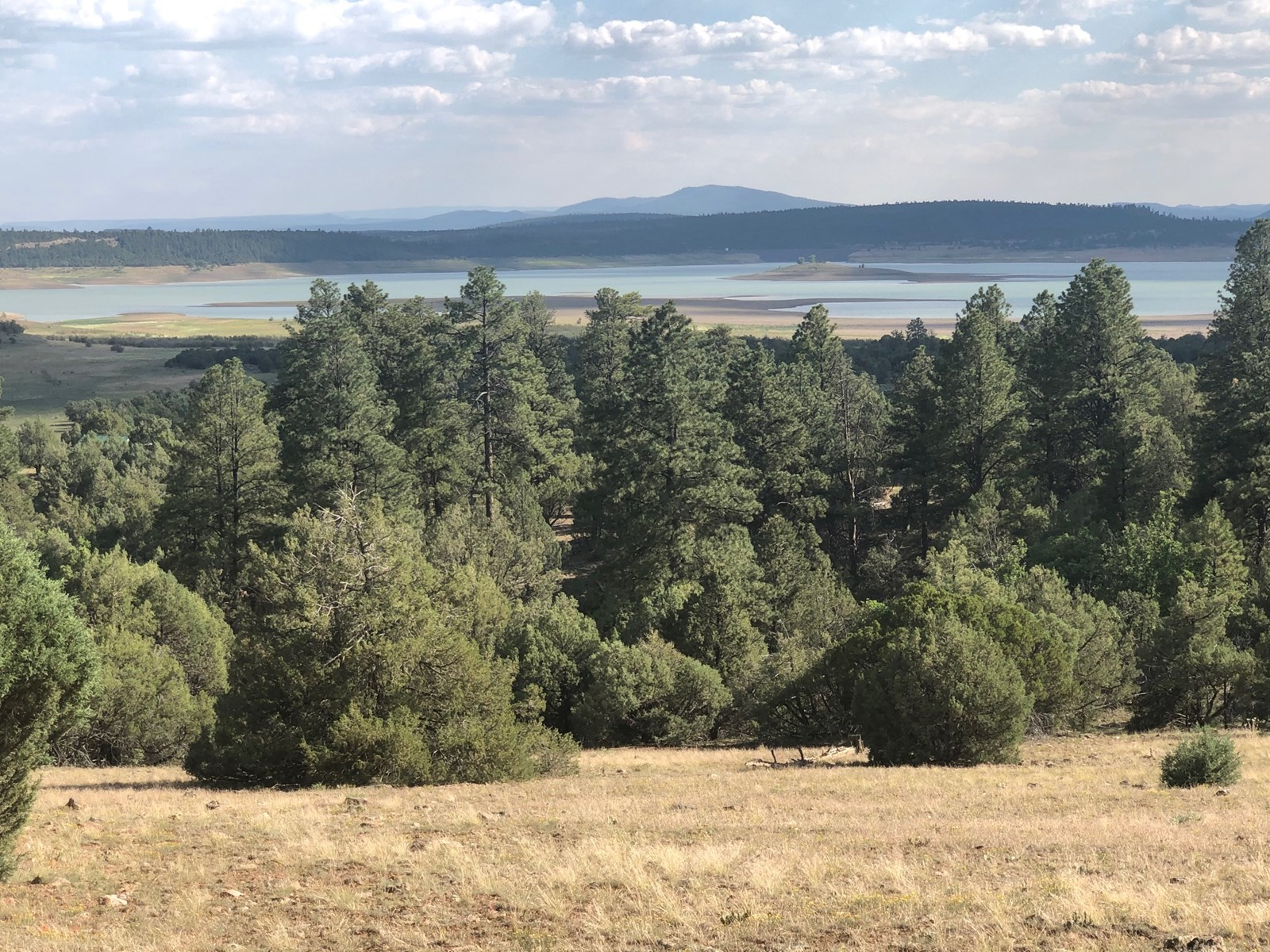 Heron Lake Property for Sale with Lake View near Chama NM