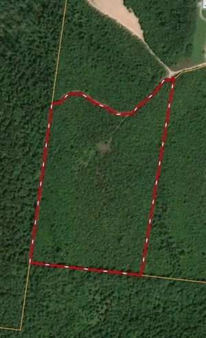 UNRESTRICTED ACREAGE FOR SALE IN HAMPSHIRE, TENNESSEE