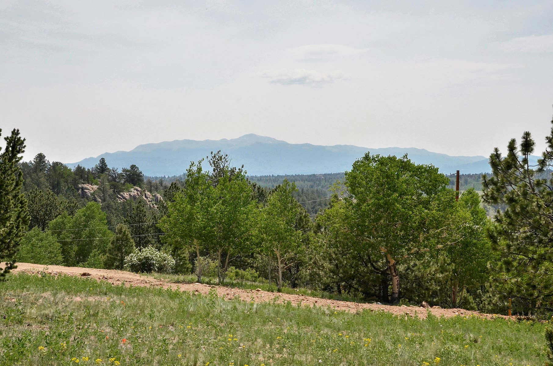 Secluded Central Colorado Mountain Lot