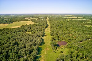 DEER HUNTER'S DREAM PROPERTY - 320 ACRES - LINCOLN COUNTY
