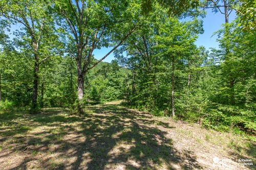 Cabin and land in Arkansas for Sale.
