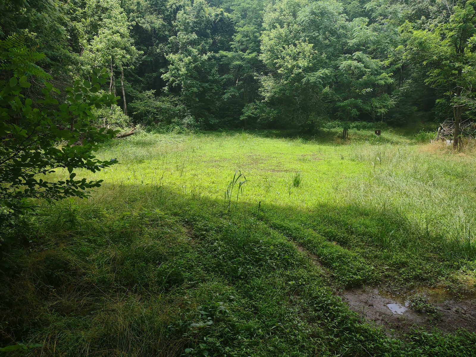 Recreational & Hunting Land for Sale in Maury County, TN