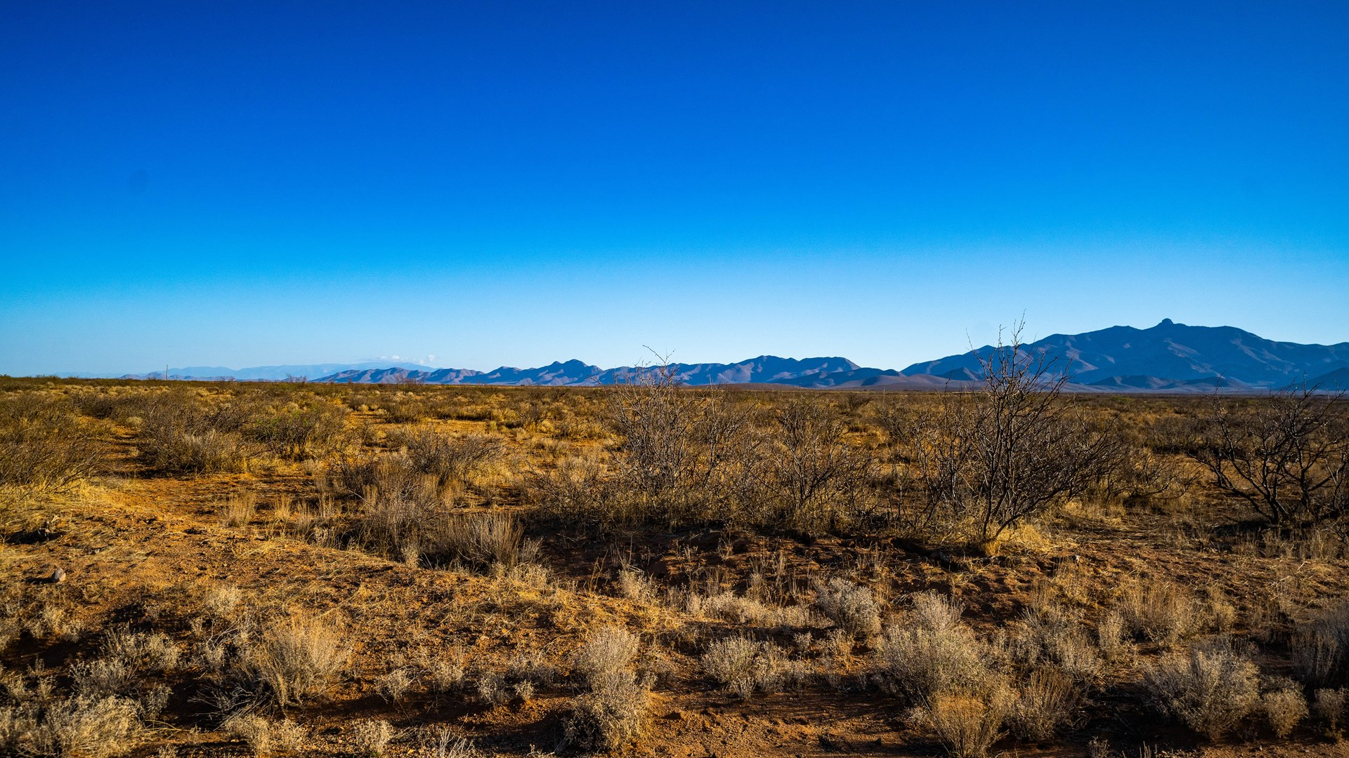 This 40-acre parcel surrounded by Mountains in Cochise