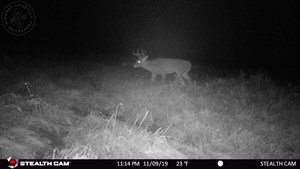 AFFORDABLE DEER & DUCK HUNTING LAND IN MONTELLO, WI