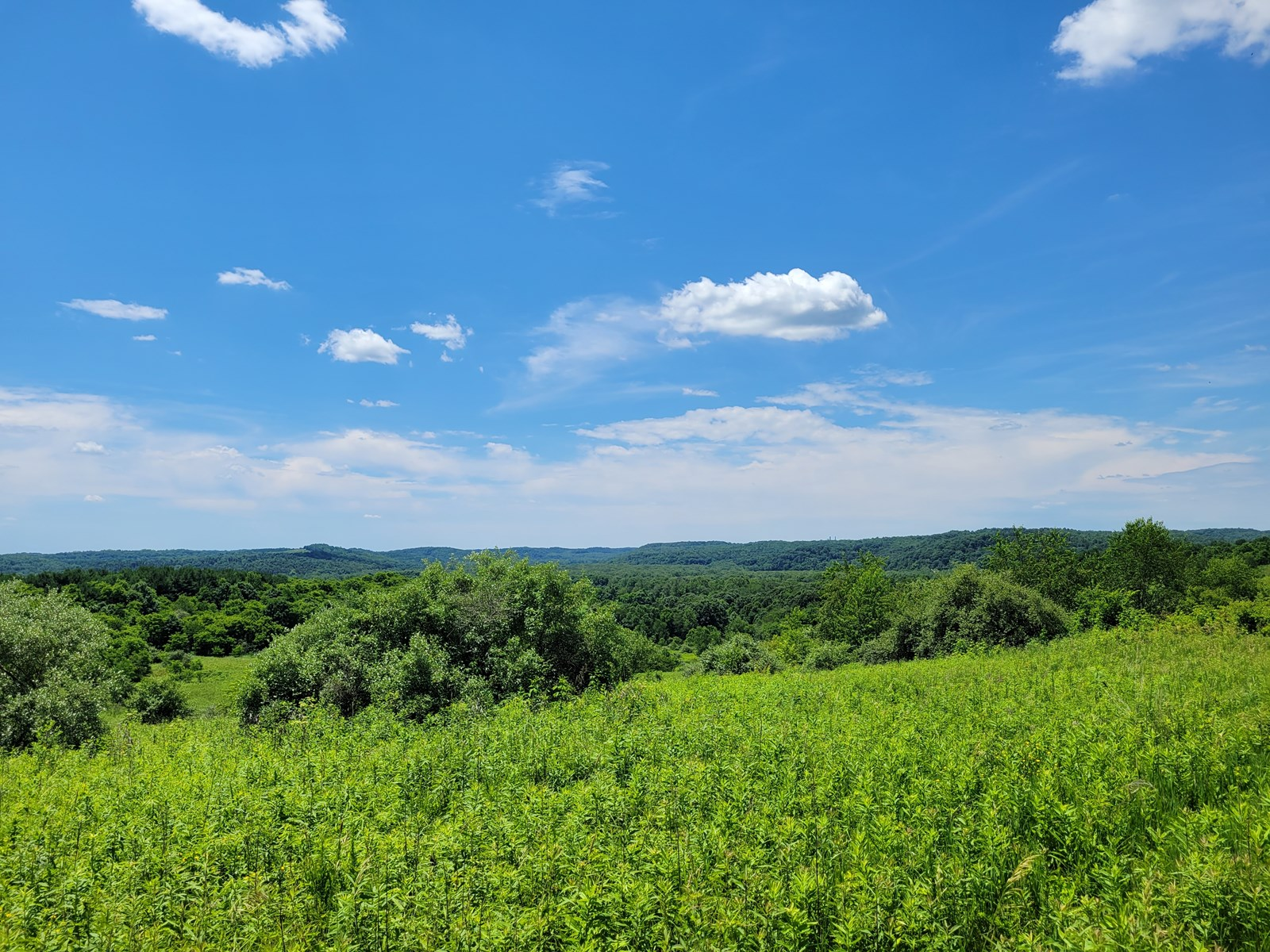 Coshocton County Scenic Views Vacant Land