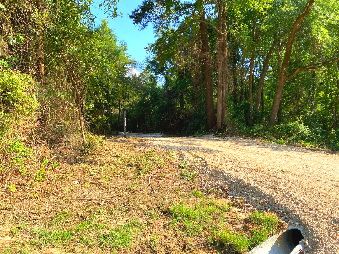 Peaceful Homesite and Recreational Property