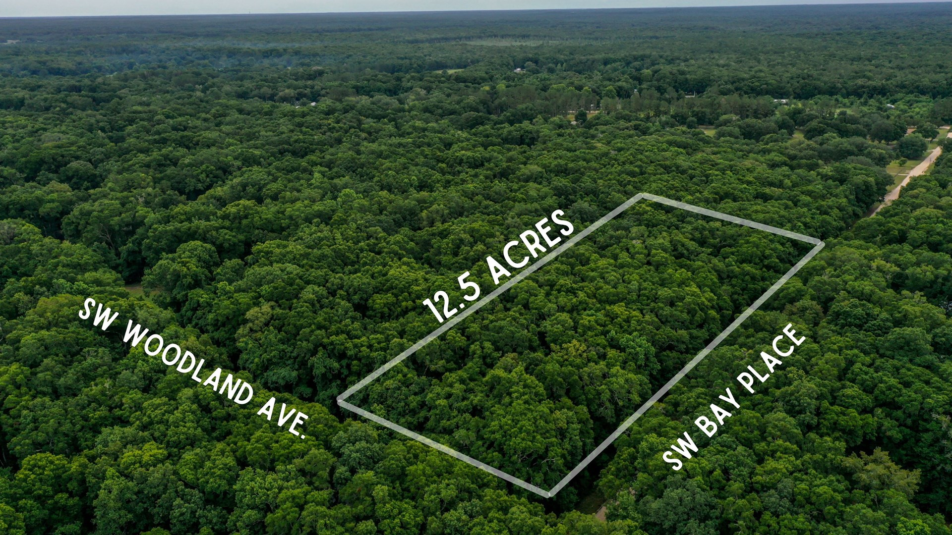 BEAUTIFUL NORTH FLORIDA LAND FOR SALE!