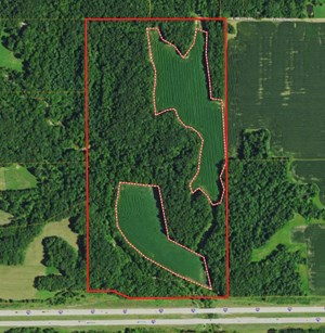 77.68 ACRES, 1950TH RD., MARSHALL, IL
