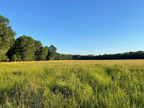 Vernon County Pasture Land For Sale