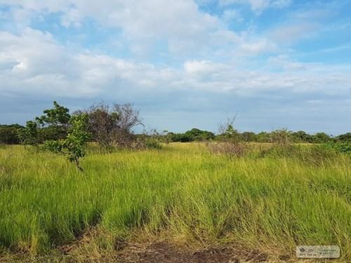 LAND FOR SALE IN RIO HATO ANTON PANAMA