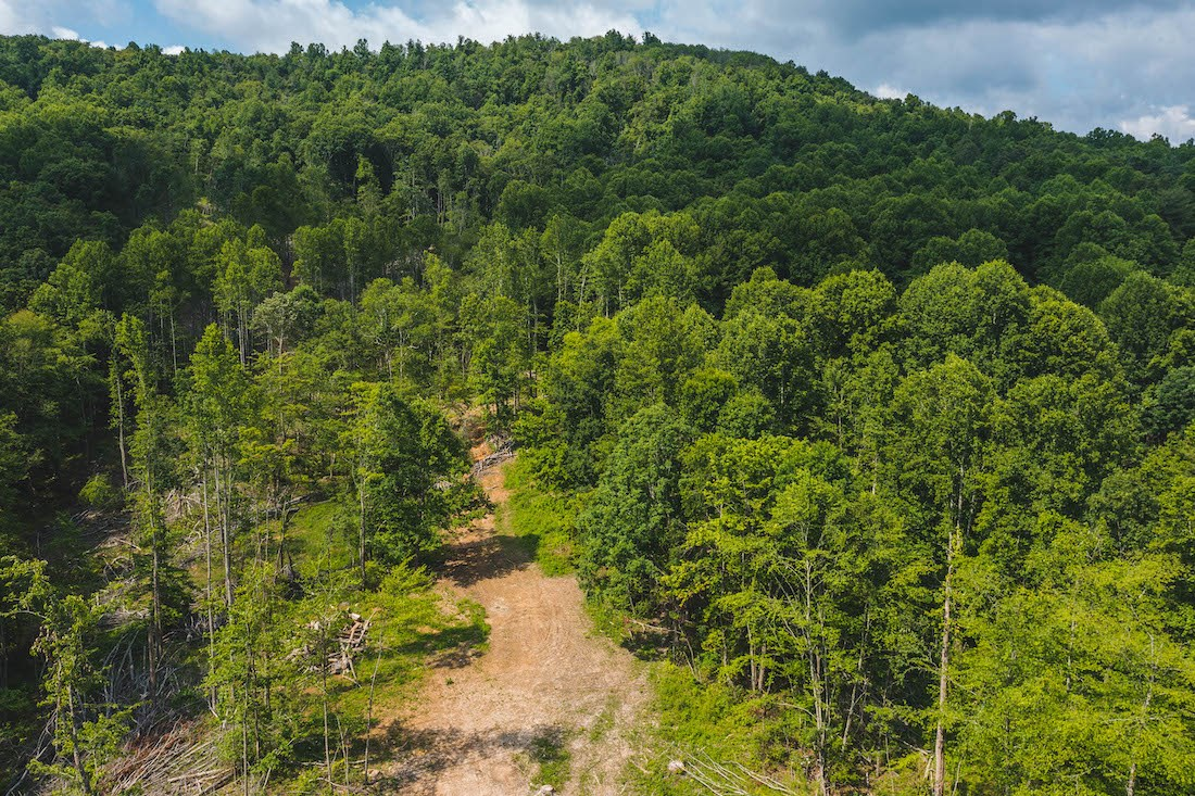 Land for Sale at Auction in Floyd VA!