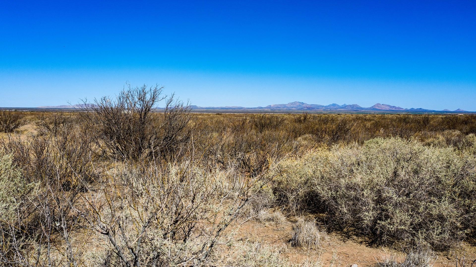 40 Acres in Pearce/Sunsites AZ