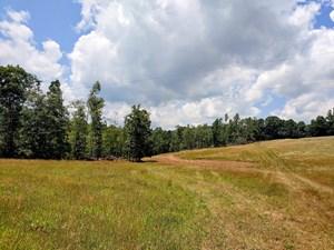 LAND FOR SALE IN MEADOWS OF DAN VA