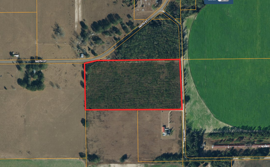 8 YEAR OLD PLANTED PINES ON 20 ACRES FOR $160,000!!