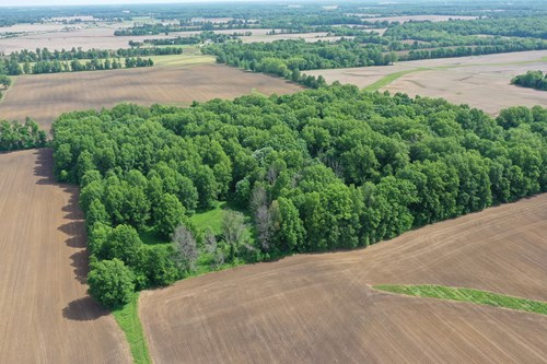 Wooded Lot Sunbury, OH, Delaware Co., Buckeye Valley Schools