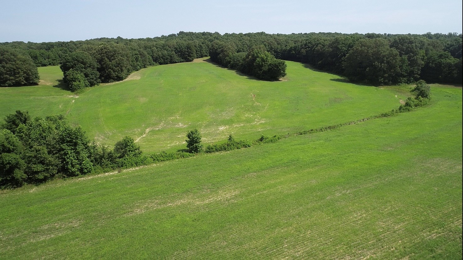 Tennessee Farm for Sale with 65 +/- Acres of Rolling Hills