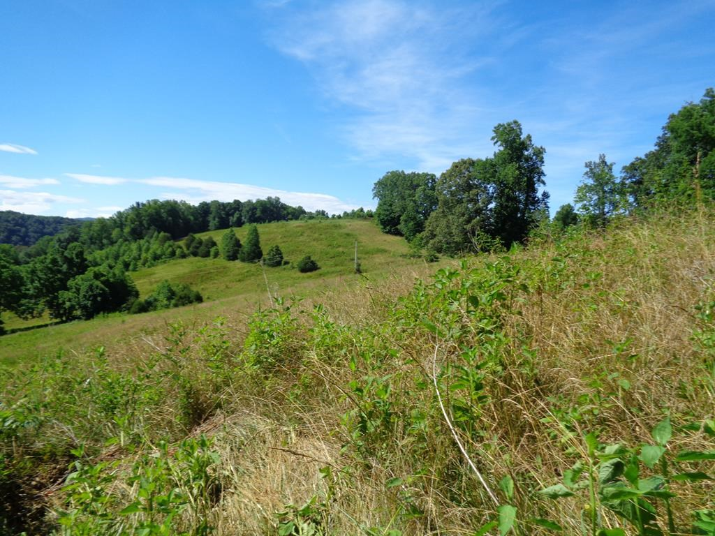 20.5 Unrestricted Acres in East TN For Sale