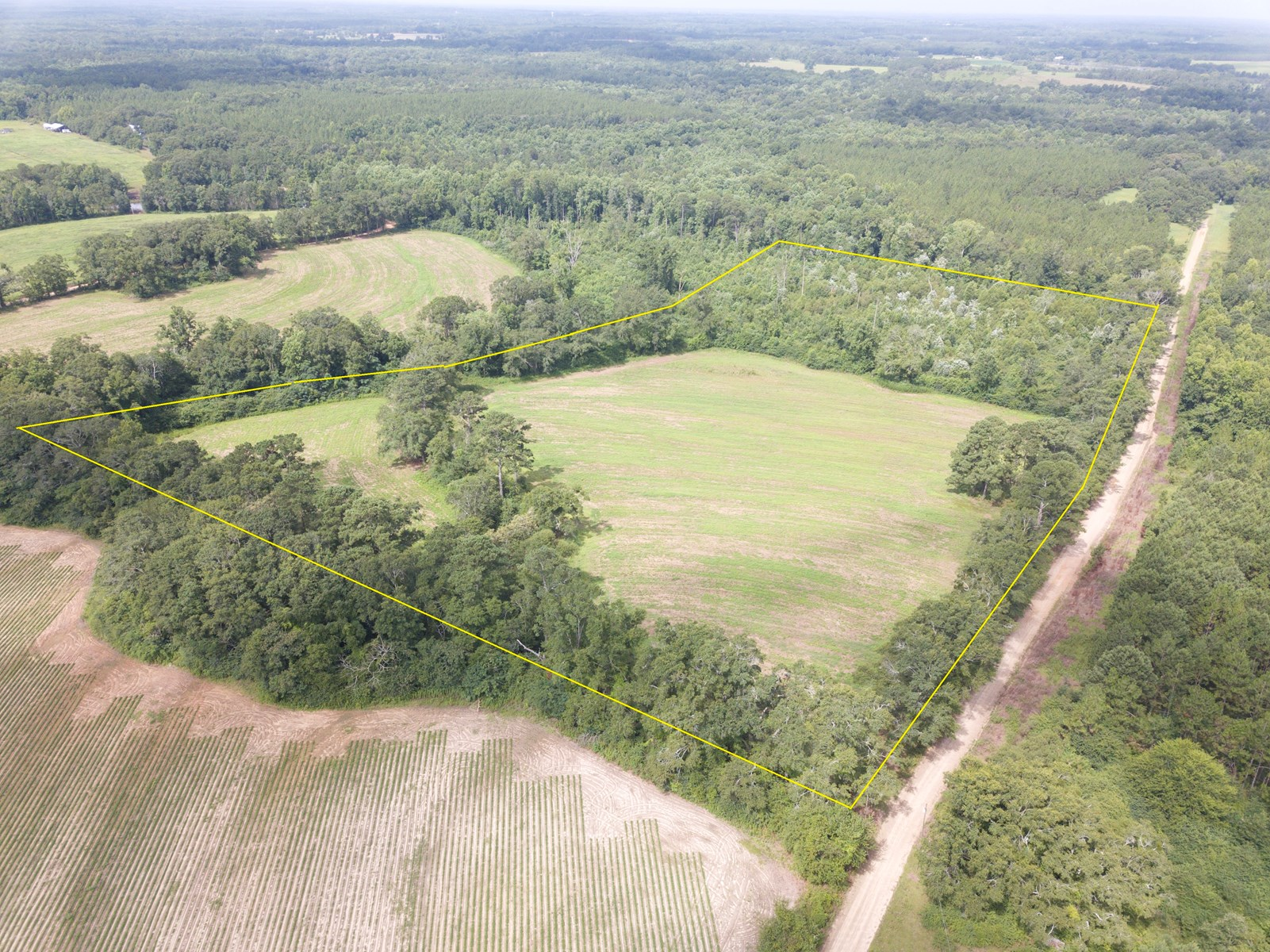 20 ACRES FOR SALE SLOCOMB, ALABAMA