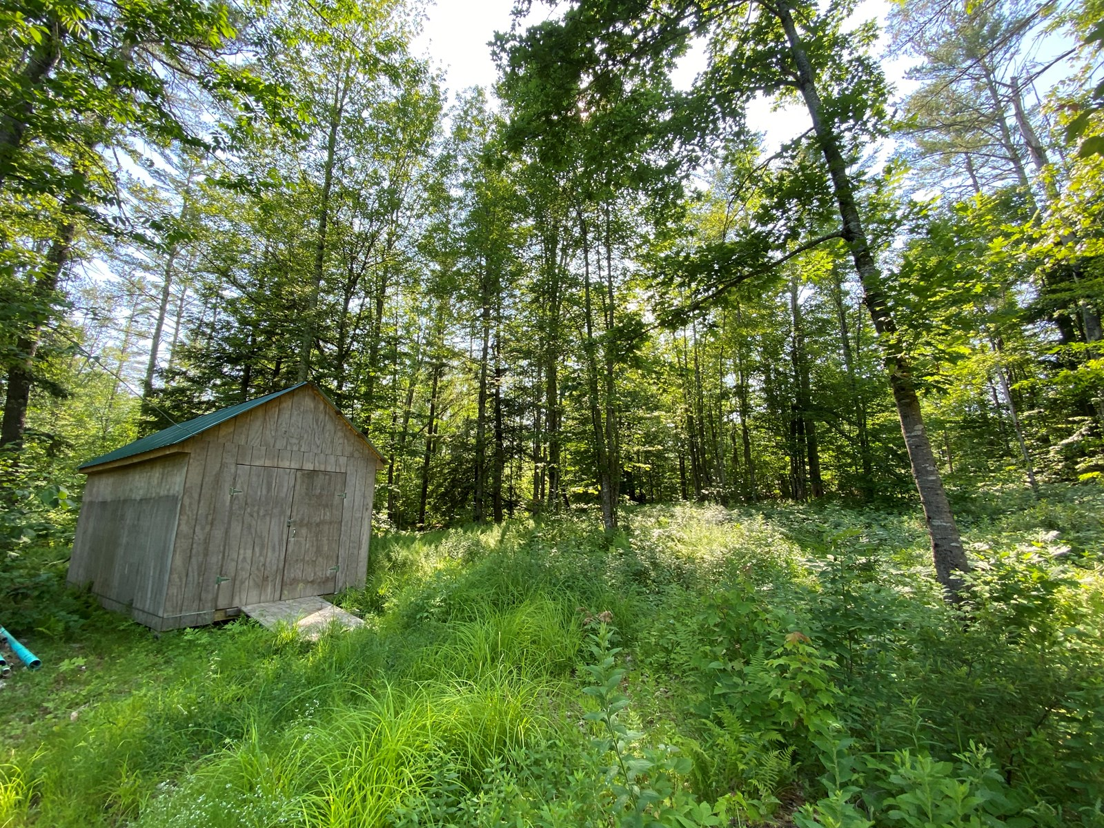 Buildable Land for sale