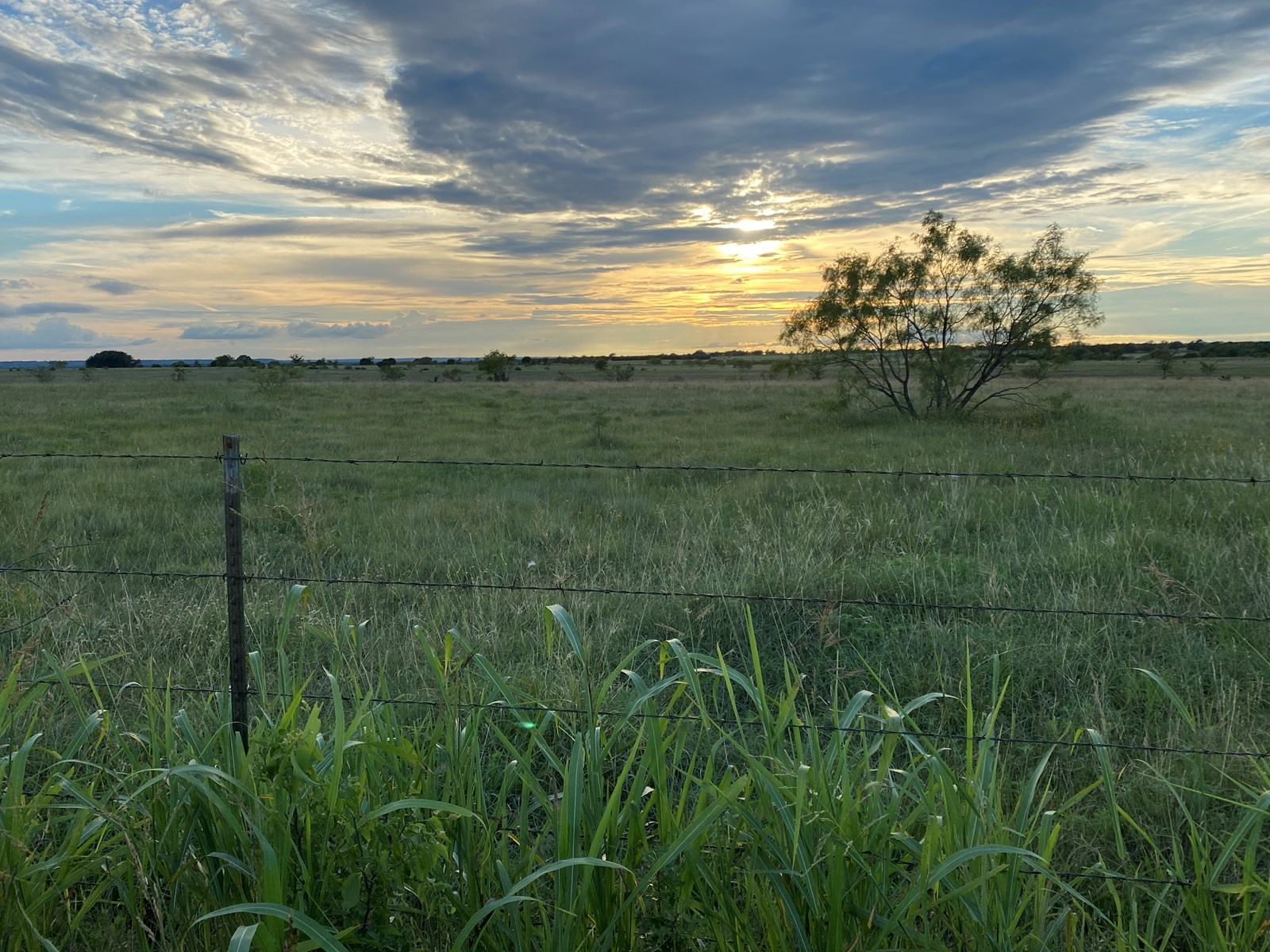 Land for Sale in Central Texas - 34 Acres in Hamilton County