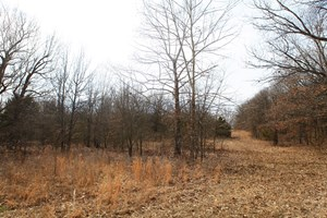 40 ACRES - CHANDLER, OK - HUNT AND LIVE ON YOUR OWN ACREAGE!