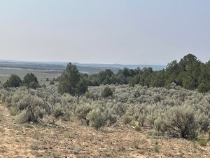 NORTHERN NM HUNTING RECREATIONAL RANCH, CHAMA NM FOR SALE